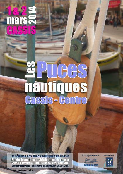 Affiche puces2014
