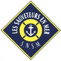 Logo pub snsm