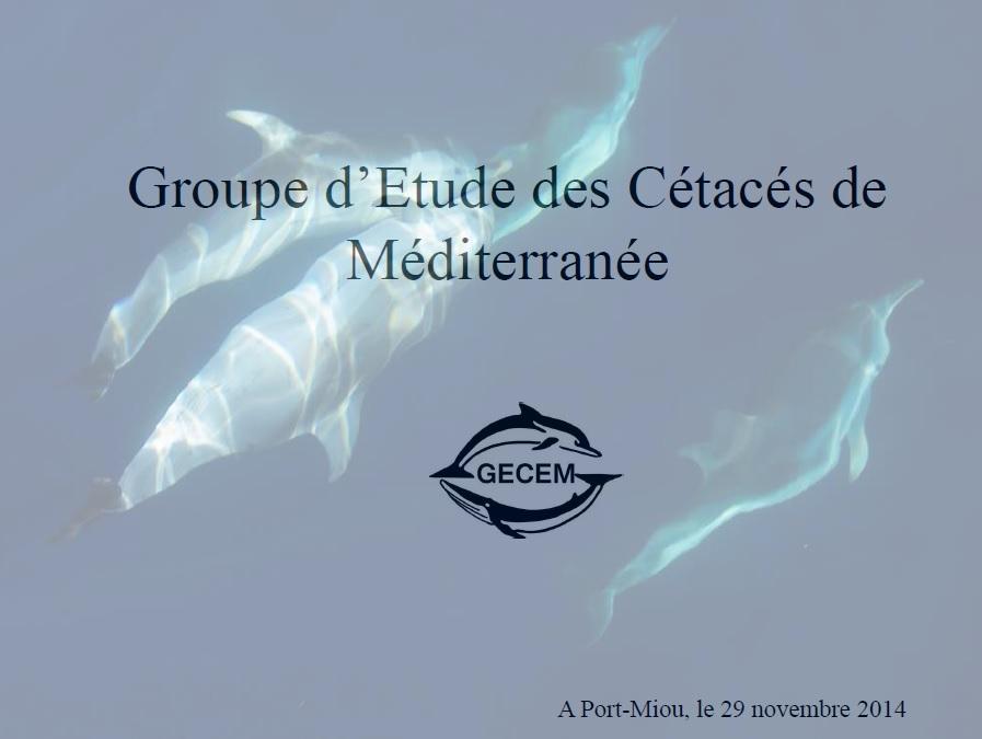 Presentation gecem 291114 au cnpm