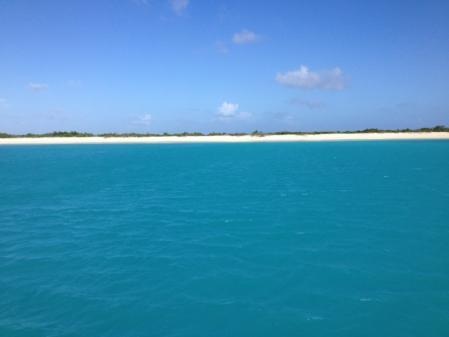 Barbuda une île surpeuplée