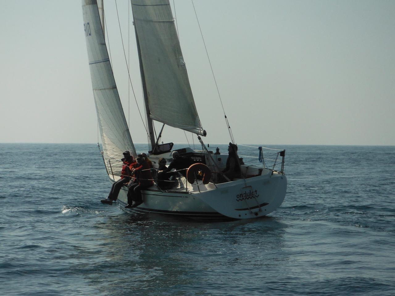 DSCF0456